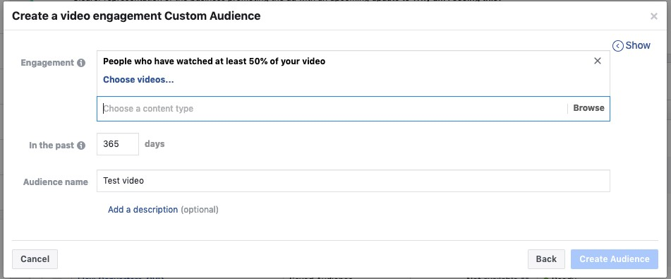 Facebook Video Engagement Custom Audience1